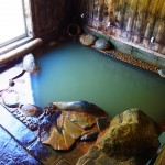 100円で入浴できる姶良市蒲生町白男「滝の湯」