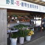 姶良市山田口にある直売所、四季折々の野菜が買える「田舎の館」