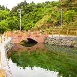 霧島山麓の湧水がこんこんと湧き出る湧水町木場「丸池湧水」
