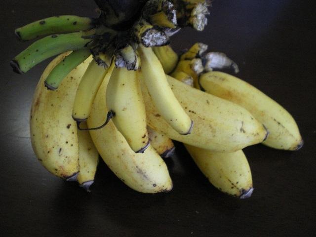 monnki-banana141102