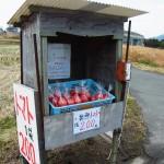霧島市隼人町姫城「完熟トマトが買える直売所」