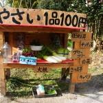 霧島市隼人町内「かわいい野菜の無人販売所」