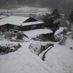 姶良市北山雪が降っています2015.01.01