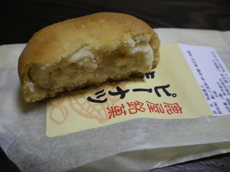 kanoya150216a