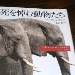 『死を悼む動物たち』バーバラ・J・キング著 秋山勝=訳を読む
