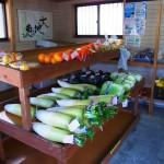 霧島市溝辺町竹子(たかぜ)、高菜漬け、梅干がうまい「竹子直売所」