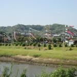 姶良市思川沿いの鯉のぼり(2015.05.05)