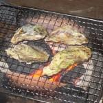 牡蠣を焼いて食べる2016.01.17