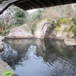 広々露天風呂が気持ちいい、人吉市矢黒町「桃李温泉 季の杜 石庭」