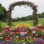 錦江湾公園花まつり2016