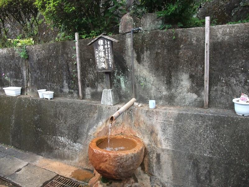 160811suwanomu