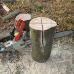 焚き火用の薪割り(樫の木)