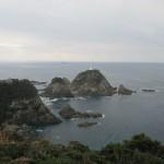 本土最南端「佐多岬」に行ってきました 2020.01.12